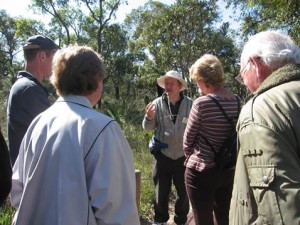 A guide explaining the biology of plants at Wireless Hill